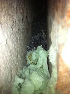 The Rat Hole - Inside the Cavity
